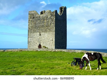 Easky Castle With A Horse Co. Sligo Ireland