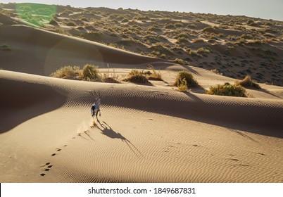 east African Oryx running in Sossusvlei in the Namibian desert