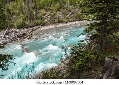 East Kootenay/British Columbia/Canada - Jun 02 2018: Partial view river at Marble Canyon East Kootenay