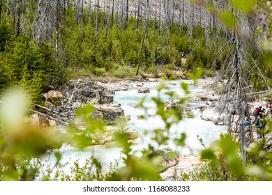 East Kootenay/British Columbia/Canada - Jun 02 2018: Partial View Vermilion river in Marble Canyon