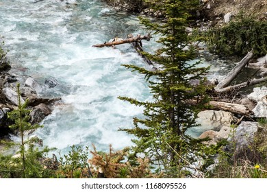 East Kootenay/British Columbia/Canada - Jun 02 2018: First View of the water cascade on the Vermilion River inside Marble Canyon
