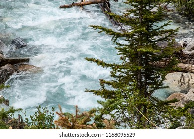 East Kootenay/British Columbia/Canada - Jun 02 2018: Third View of the water cascade on the Vermilion River inside Marble Canyon