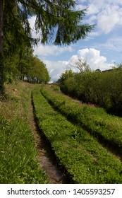 The East Looe Valley Looe to liskeard