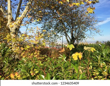 East suburb of Paris. View from Villiers sur Marne. France.