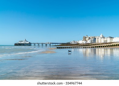 Eastbourne town, near the seven sisters, south England, East Susex