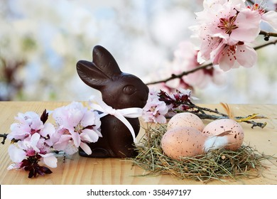 Easter background, card with Easter eggs in nest, chocolate bunny and pink spring blossoms in the background.