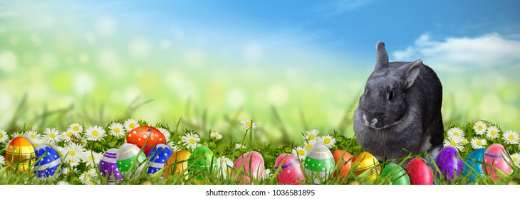 Easter background with Easter eggs and Easter bunny