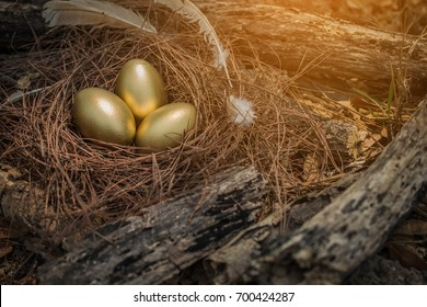 Easter background golden eggs, Golden eggs in nest on dark vintage wooden background