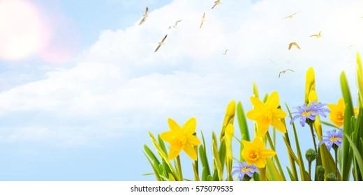 Easter background, Spring concept