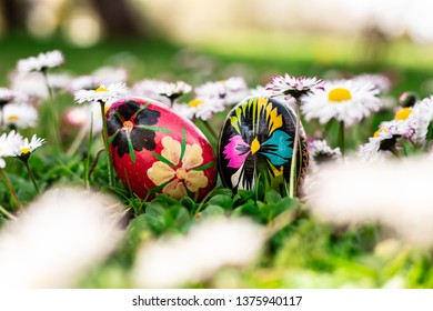 Easter basket with eggs spring daisies