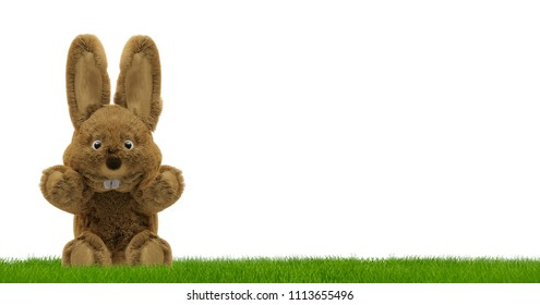 Easter bunny 3d rendering sitting on green grass