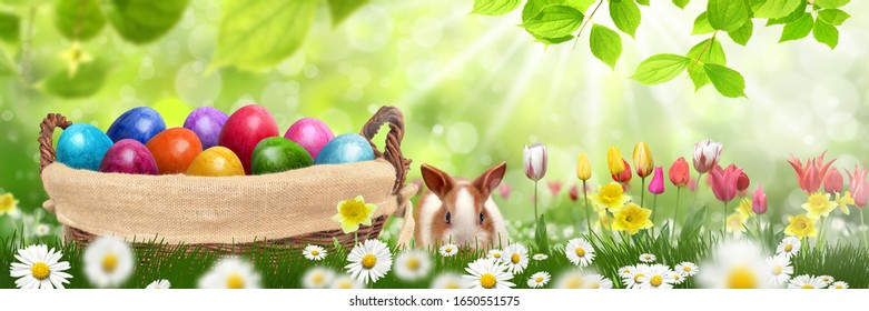 An Easter bunny and basket of Easter eggs in nature   - Shutterstock ID 1650551575