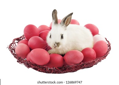 Easter bunny in a basket with red eggs, isolated on white