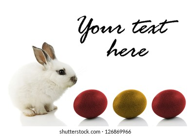 Easter Bunny with colored eggs, isolated on white with copy space
