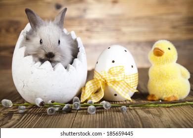 Easter bunny in the egg, duck Easter, based - Shutterstock ID 185659445