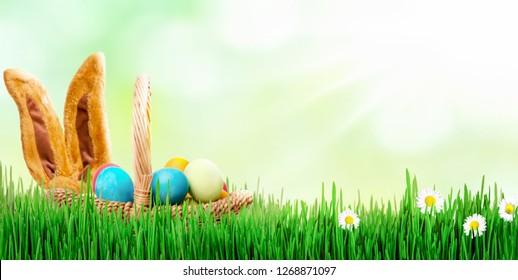 Easter bunny meadow