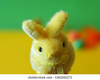 Easter bunny and on yellow and green background