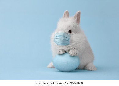 Easter bunny rabbit in coronavirus face mask on blue background. Creative holiday concept.