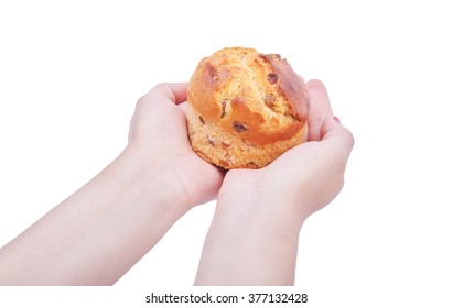 Easter cake, raisin bread, baked in a hand isolated on white background