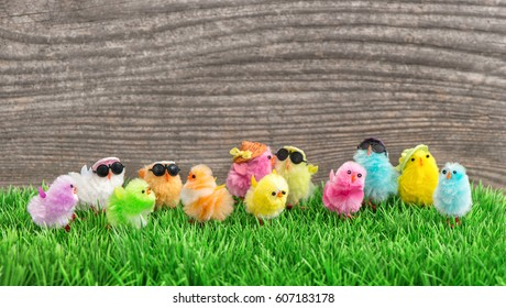 Easter chickens in green grass. Funny travel holidays background