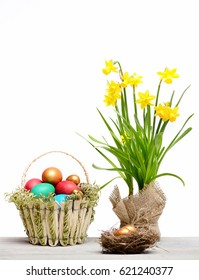 easter colorful painted quail eggs in basket, golden egg in bird nest, spring yellow narcissus flower on green stem in burlap isolated on white background, womens or mothers day, business and finance