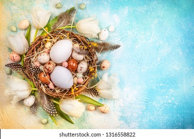Easter composition with Easter eggs in nest and white tulips on the blue background. Bunch of spring flowers and Easter decor. Top view with copy space.