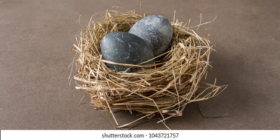 Easter composition with gray eggs on a colored background, space for text.
