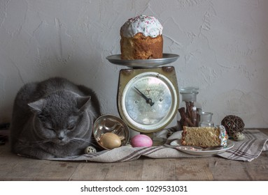 Easter composition with a gray slipping cat, scale with Easter bread, painting and quail eggs, glass bottle with cinnamon sticks, linen cloth on the wooden table.