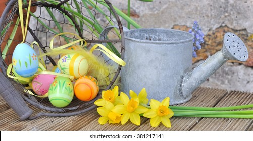Easter decoration with daffodils and watering can in garden