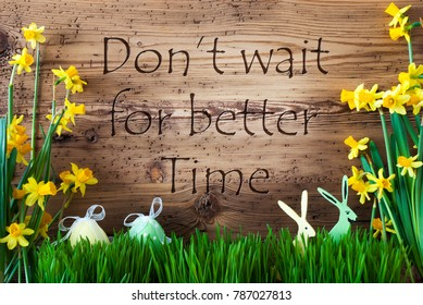Easter Decoration, Gras, Quote Not Wait Better Time