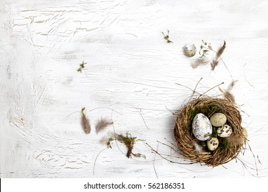 easter decoration with nest and egg on white wood background