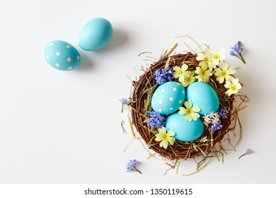 Easter decoration with nest, eggs and spring flowers. Blue Easter eggs in nest with delicate spring blossoms.