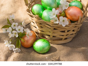 Easter decoration with spring flowers in colorful eggs