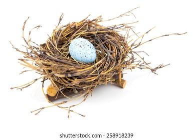 Easter egg in birds nest isolated on white background