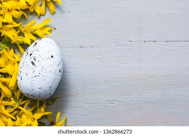 Easter egg and flowers on ble wooden background.