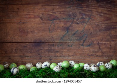 easter egg lying on moss before old wooden background