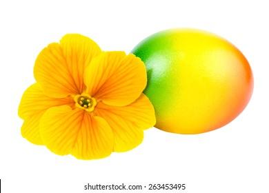 Easter Egg Yellow Flower