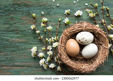Easter eggs in a basket of straw with flowering branches on a shabby wooden background