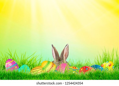 Easter eggs and cute bunny in green grass. Festive decoration. Happy Easter