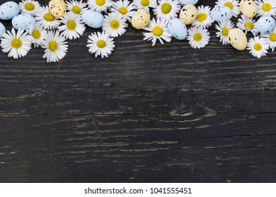 Easter eggs and daisies on dark wooden background
