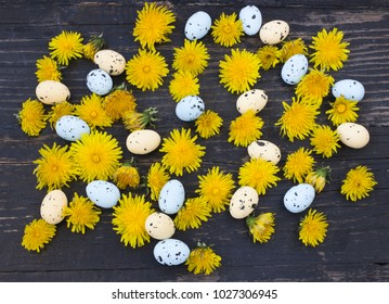 Easter eggs and dandelion on wooden background