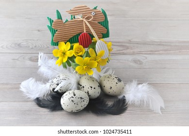 Easter eggs with feathers, spring decoration.