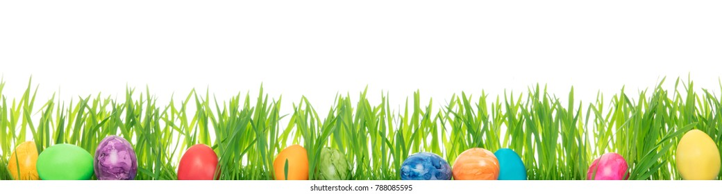 Easter eggs and grass blades, white Background with copyspace, concept Happy easter