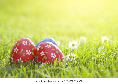 Easter eggs lying on green spring grass along with Bellis flowers. Space for text