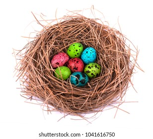 Easter eggs in nest painted, isolated on white background. Colored quail eggs