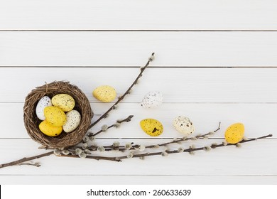 Easter eggs in nest and willow branch