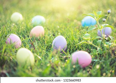 Easter eggs on green grass with dew drop in the morning.
