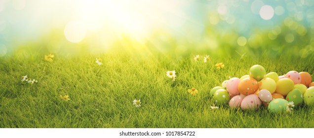 Easter eggs on meadow grass