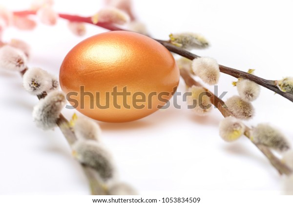 easter eggs set of traditional egg painted in golden color with spring blossoming willow twigs isolated on white background. Happy Easter concept, luxury and success