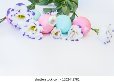 Easter eggs and spring flowers narcissi on white background